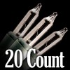 20 Count
